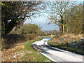 TM3795 : Litchmere Road approaching Hales Green Common by Evelyn Simak