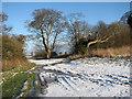TM3696 : Bridleway to Transport Lane by Evelyn Simak