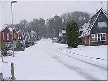 SO9194 : Snowy Rowena Gardens by Gordon Griffiths