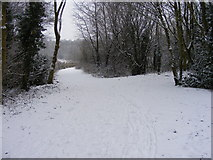 SO9194 : Snowy Path in the Park by Gordon Griffiths