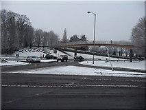 SS9612 : Tiverton : Heathcoat Way Roundabout, Bridge & Flora by Lewis Clarke