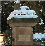 SJ9090 : Lion in the Snow by Gerald England