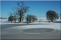 SO8843 : Trees beside a frozen Croome River by Philip Halling