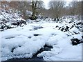 NM8905 : Frozen River Liever by Patrick Mackie