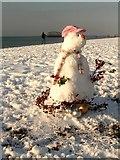 TQ3103 : Brighton Beach Snowman by Peter Whitcomb