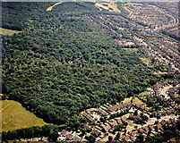 TQ8187 : Aerial view of Belfairs Nature Reserve, Hadleigh by Edward Clack