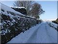 SE0614 : Follingworth Lane, Slaithwaite by Pamela Norrington
