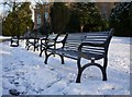 J3372 : Benches in the snow, Botanic Gardens by Rossographer