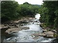 NS8544 : The River Clyde from Stonebyres Weir by Lairich Rig