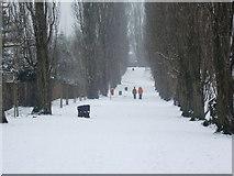 TQ3095 : Snowy walk, Oakwood Park, London N14 by Christine Matthews