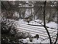 NY9265 : Newcastle to Carlisle Railway Line by Les Hull