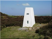 NZ7309 : Trig point at Beacon Hill by Philip Barker