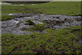 SD4091 : Footpath from Wood farm by Tom Richardson