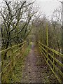 SU4515 : Itchen Way detour path by dinglefoot
