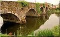 S7143 : The Graiguenamanagh Bridge by Albert Bridge