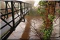 J3067 : Footbridge near Drumbeg (2) by Albert Bridge