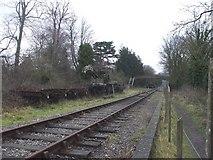 SO6302 : Railway at St Mary's Halt, Lydney by John Lord