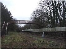 SO6302 : Disused footbridge at St Mary's Halt, Lydney by John Lord