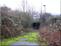 TG2407 : The Deal Ground - tunnel under the railway line by Evelyn Simak
