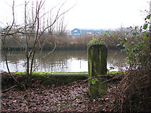 TG2407 : The Deal Ground - old mooring post by Evelyn Simak