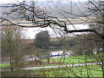 TG2707 : Whitlingham Country Park - rowers on the River Yare by Evelyn Simak