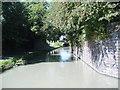 SU2662 : Kennet & Avon Canal, Crofton by Dr Neil Clifton