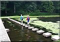 SE2869 : Stepping Stones, Studley Royal Water Gardens by David P Howard