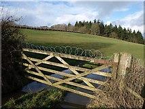 SX8578 : Barbed wire near Finlake by Derek Harper