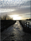 TL5392 : Winter Sun at Hundred Foot Washes by Alison Rawson