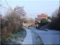 SO8689 : Staffordshire & Worcestershire Canal - looking northeast to Hinksford Bridge (No. 38) by P L Chadwick