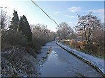SO8689 : Staffordshire & Worcestershire Canal - looking southwest from Hinksford Bridge by P L Chadwick