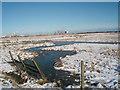 NZ5024 : Stream near the brine fields by Philip Barker