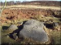 SK2773 : Replica 'Cup and Ring' Rock Art by Jonathan Clitheroe