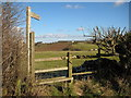 SO7457 : Stile and footpath, near Berrow Green by Philip Halling