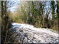 TM2796 : A walk along Green Lane by Evelyn Simak