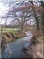 TQ5342 : River Medway near Nashes Farm by David Anstiss