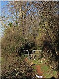 SX9066 : Path from South Parks Road by Derek Harper