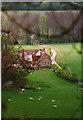 SU7591 : Spring in the Chilterns by john shortland