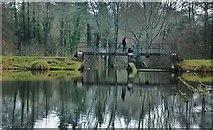 ST2213 : Royston Water: Bridge over the Weir by Mr Eugene Birchall