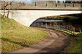 J3269 : Path, Shaw's Bridge, Belfast (2) by Albert Bridge