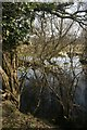 TL9395 : Pond beside the Pingo Trail by Katy Walters