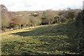 SP3575 : Stonebridge Meadows nature reserve by Robin Stott