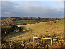 SO5504 : Field near St Briavels by Ruth Sharville