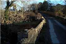 G7682 : Bridge at White Hill by louise price
