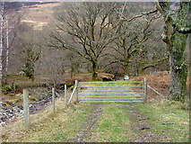 NN1161 : Start of the path to Camus na h Eirighe by Dave Fergusson