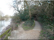SZ0995 : Bournemouth : The River Stour Riverside Path by Lewis Clarke