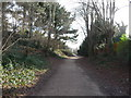 SZ0996 : Bournemouth : Footpath by Lewis Clarke