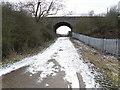 TL2181 : The eastern aspect of Green Lane bridge by Michael Trolove