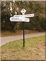 SY8292 : Throop: signpost at Throop Clump crossroads by Chris Downer