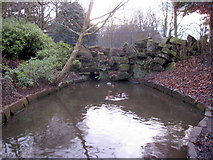 SJ3787 : Sefton Park - a small pool by John S Turner